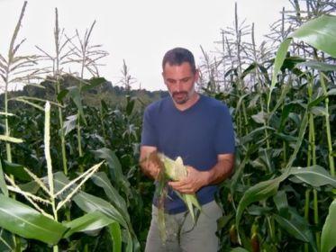 Ken in field